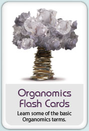 Organomics Flash Cards