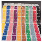 Smead LCC Color-Coded Numeric Label 67230, 0-9, Label Roll, Assorted Colors