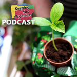 Podcast 170: Ten Spring Projects to Make Your Home and Heart Happy- Pt 1
