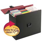 Life Documents Organizer Kit